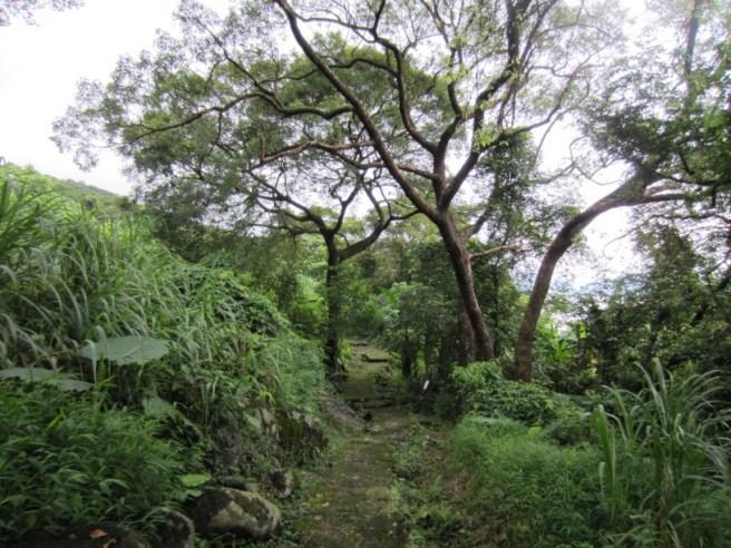 Hiking 3.9.16 Shui Long Wo (4)