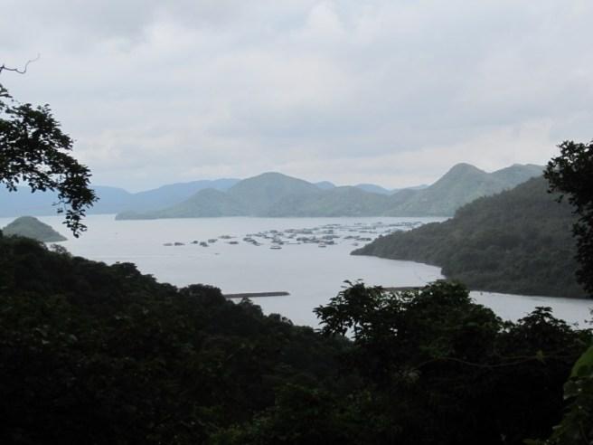 Hiking 3.9.16 Shui Long Wo (6)