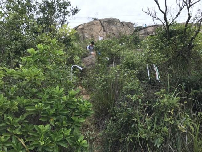 hiking-23-10-16-tai-lam-chung-reservoir-12