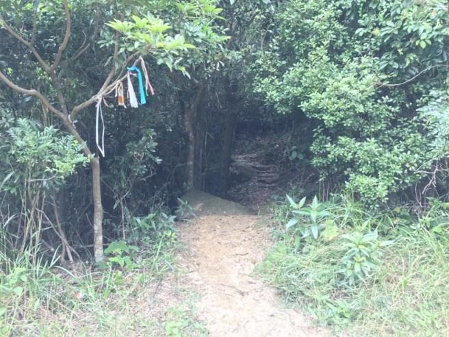 hiking-23-10-16-tai-lam-chung-reservoir-15