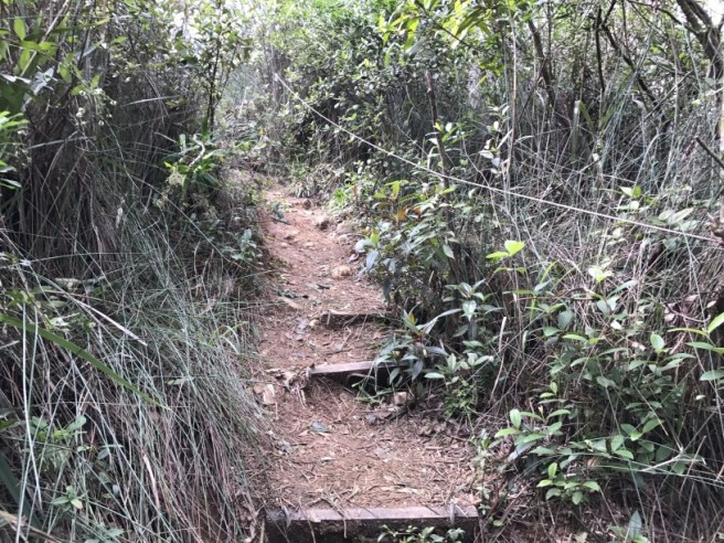 hiking-23-10-16-tai-lam-chung-reservoir-16