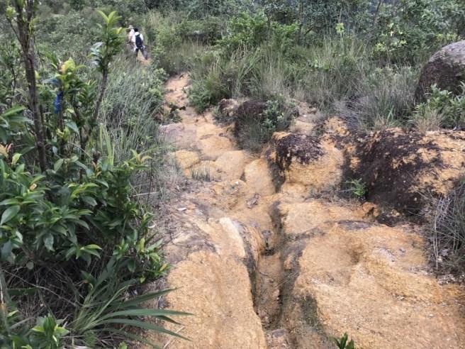 hiking-23-10-16-tai-lam-chung-reservoir-23