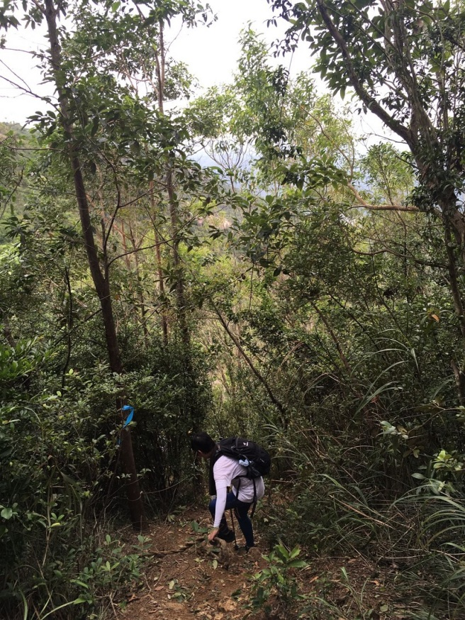 Hiking 23.10.16 Tai Lam Chung Reservoir (30).JPG