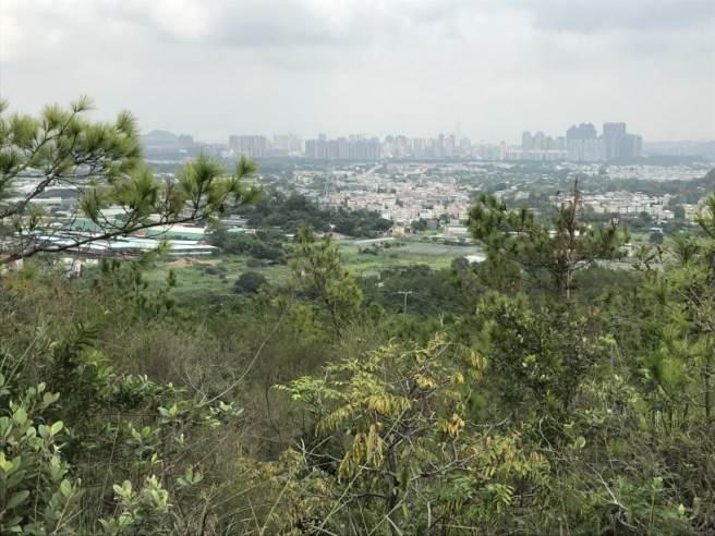 hiking-23-10-16-tai-lam-chung-reservoir-7
