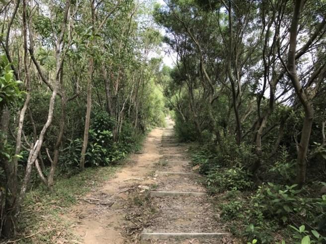 hiking-30-10-16-ko-lau-wan-12