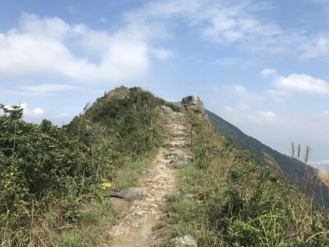 hiking-13-11-16-tai-to-yan-16