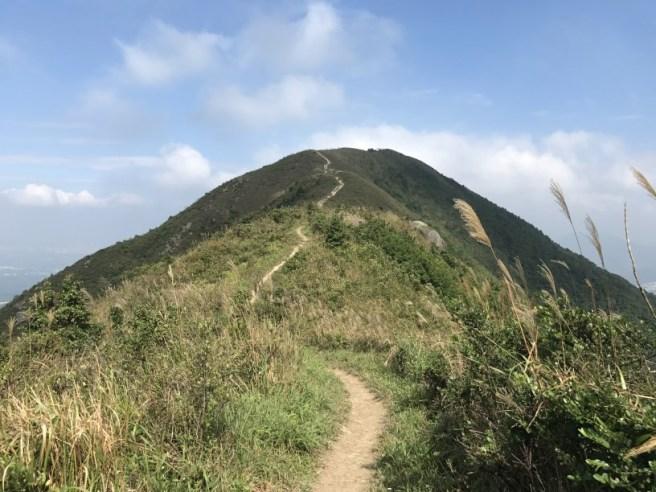 hiking-13-11-16-tai-to-yan-24