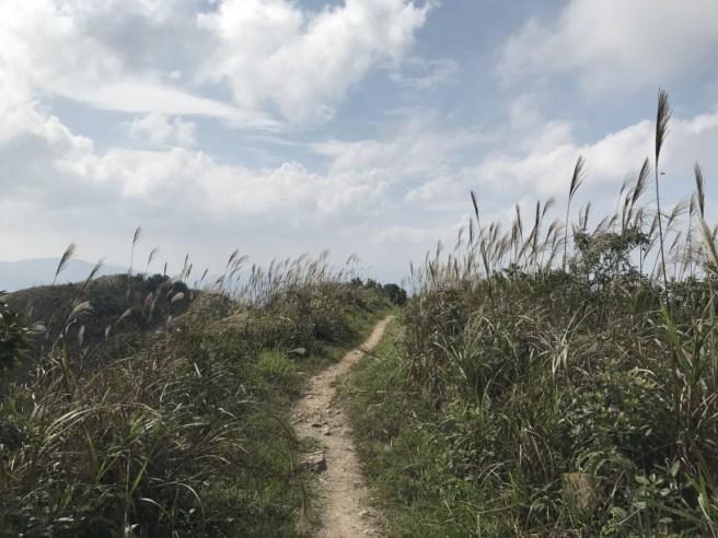 hiking-13-11-16-tai-to-yan-28