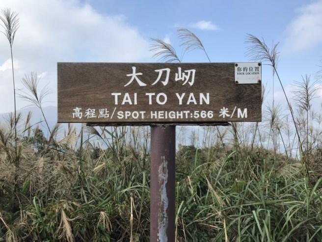 hiking-13-11-16-tai-to-yan-29