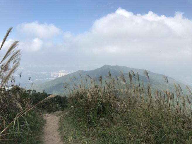 hiking-13-11-16-tai-to-yan-30