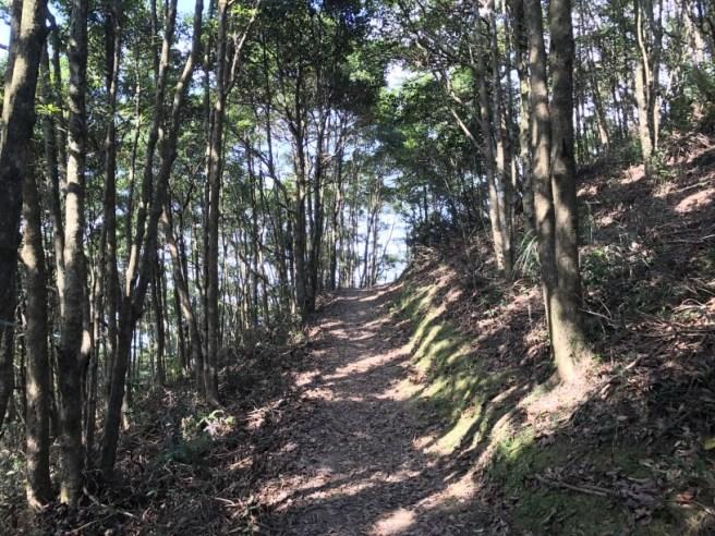 hiking-13-11-16-tai-to-yan-31