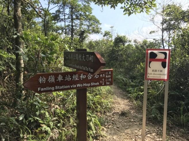 hiking-13-11-16-tai-to-yan-33