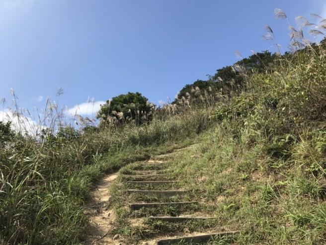hiking-13-11-16-tai-to-yan-34
