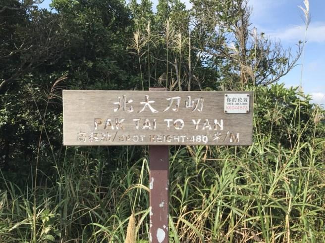 hiking-13-11-16-tai-to-yan-36