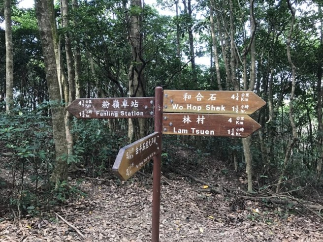 hiking-13-11-16-tai-to-yan-37