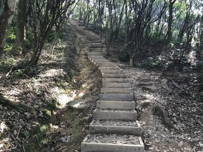 hiking-13-11-16-tai-to-yan-38