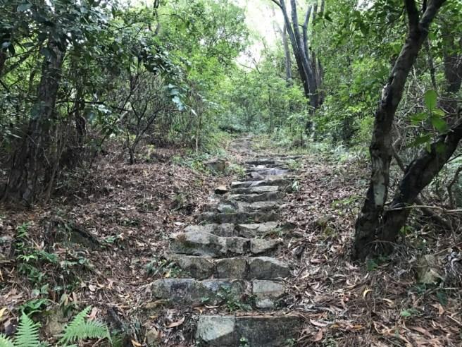 hiking-19-11-16-lau-shui-heung-21