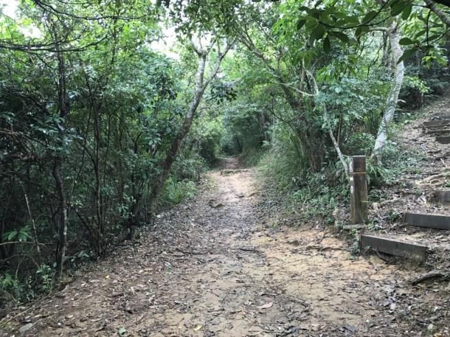 hiking-19-11-16-lau-shui-heung-23