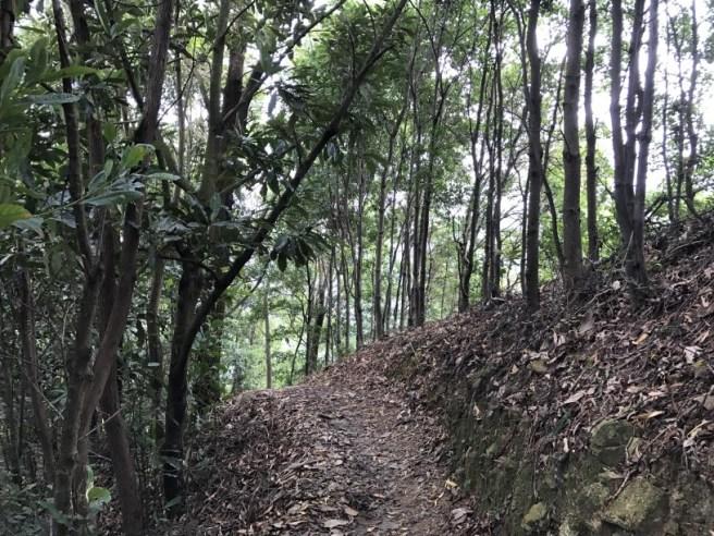 hiking-19-11-16-lau-shui-heung-27