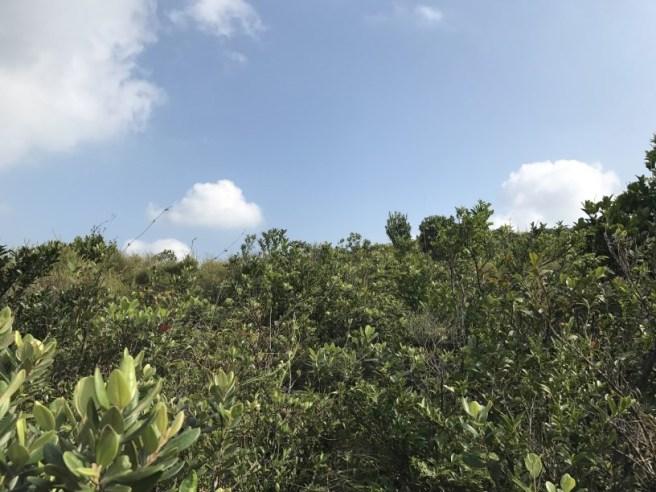 hiking-5-11-16-pai-tau-tun-19