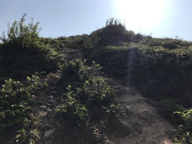 hiking-10-12-16-kai-shan-3