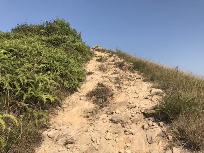 hiking-10-12-16-kai-shan-9