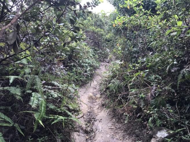 hiking-24-12-16-high-junk-peak11