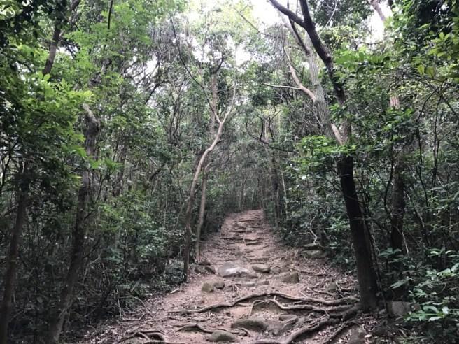 hiking-24-12-16-high-junk-peak4