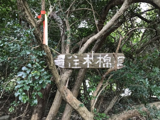 hiking-25-12-16-po-pin-chau-4