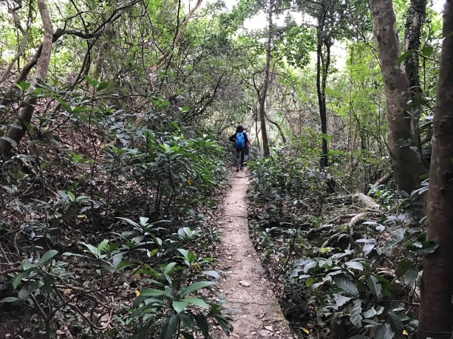 Hiking 25.12.16 Po Pin Chau (47).JPG