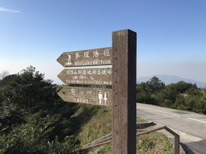 hiking-31-12-16-tai-mo-shan-6