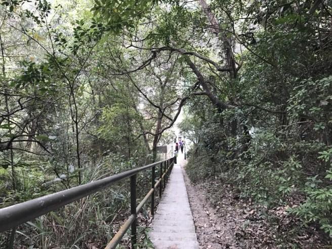 hiking-19-2-17-hung-shui-hang-19