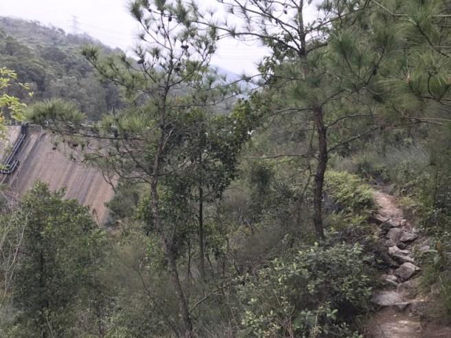 hiking-19-2-17-hung-shui-hang-36
