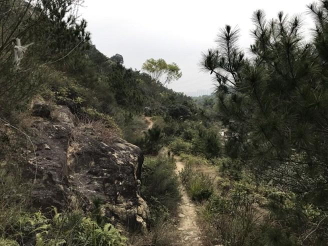 hiking-19-2-17-hung-shui-hang-37
