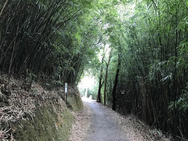 hiking-26-2-17-yuen-tun-18