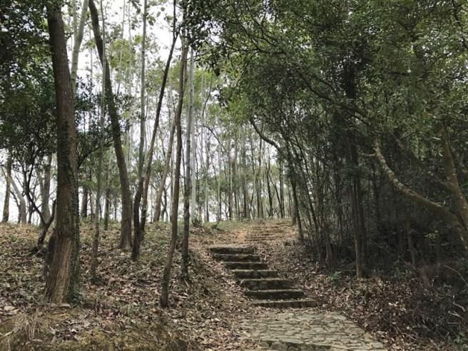 hiking-26-2-17-yuen-tun-3