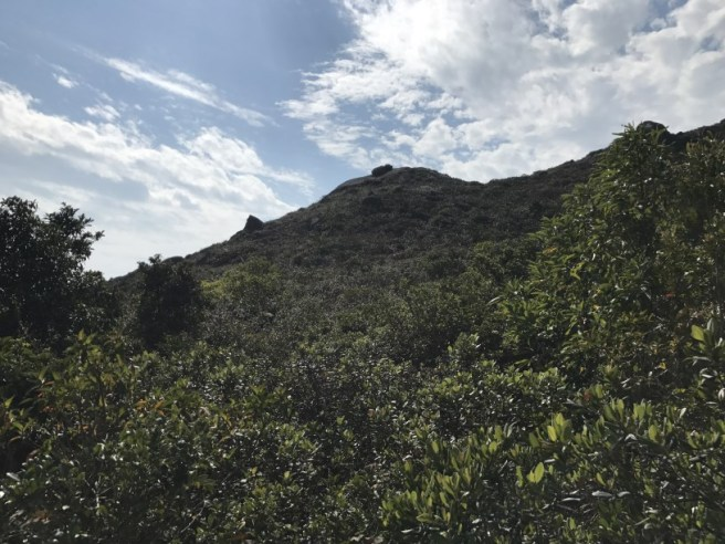 hiking-4-2-17-tin-ha-shan-21
