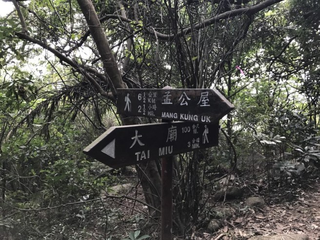 hiking-4-2-17-tin-ha-shan-29