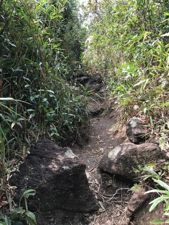 hiking-5-2-2017-tai-tun-1
