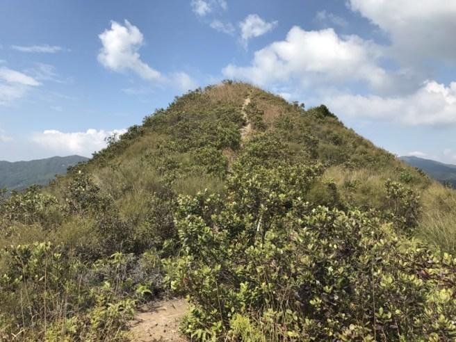 hiking-5-2-2017-tai-tun-10