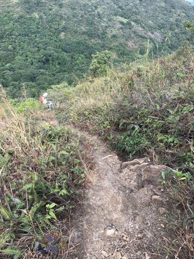 hiking-5-2-2017-tai-tun-14