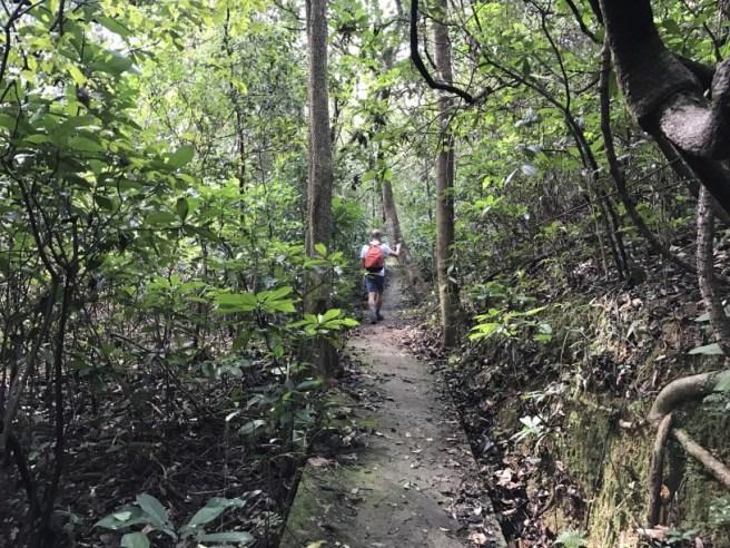 hiking-5-2-2017-tai-tun-27
