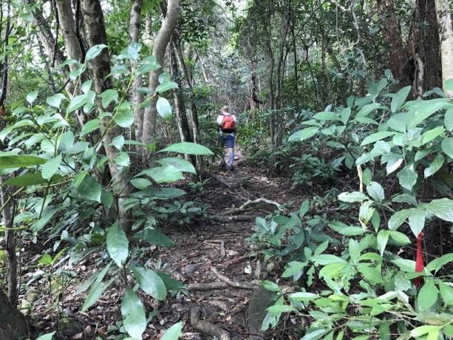 hiking-5-2-2017-tai-tun-28