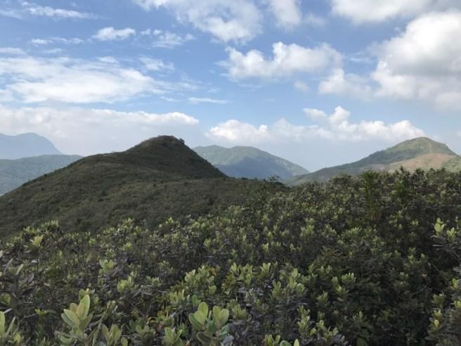 hiking-5-2-2017-tai-tun-9