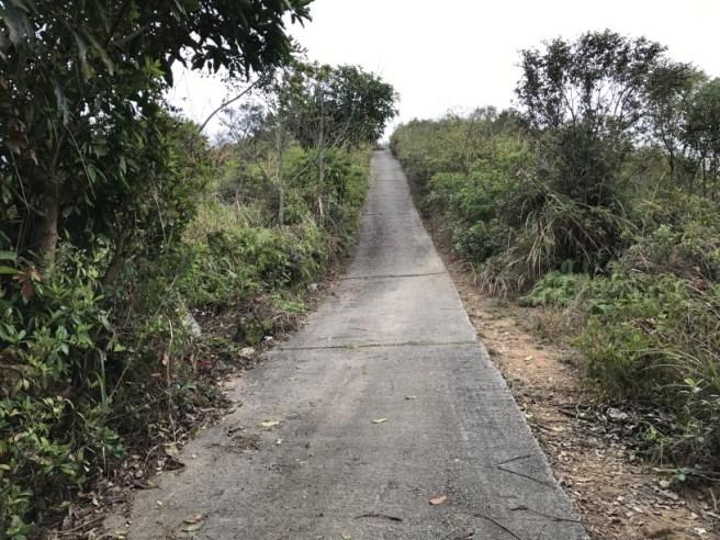 Hiking 11.3.17 Wa Shan (15)