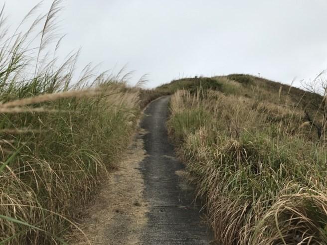 Hiking 11.3.17 Wa Shan (7)