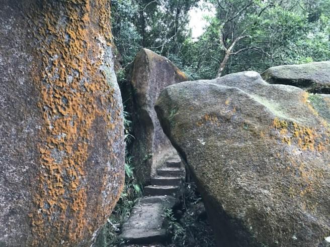 Hiking 26.3.17 Hong Pak Country Trail (10)