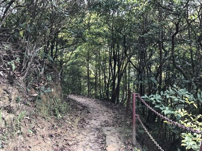 Hiking 26.3.17 Hong Pak Country Trail (11)