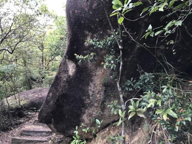 Hiking 26.3.17 Hong Pak Country Trail (13)