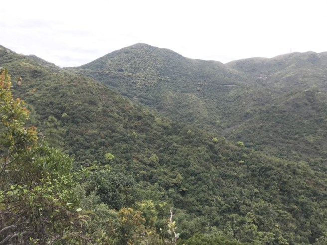 Hiking 26.3.17 Hong Pak Country Trail (14)